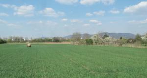 Kirchheim: Die Ländlich-Schöne