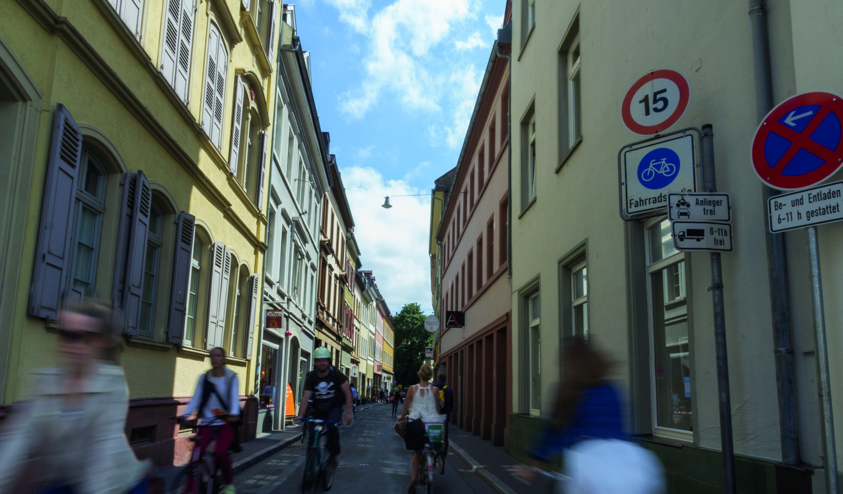 Die Plöck ist eine der verkehrsreichsten Straßen Heidelbergs - und vermutlich eine der unbeliebtesten. Foto: Philipp Köhnlein