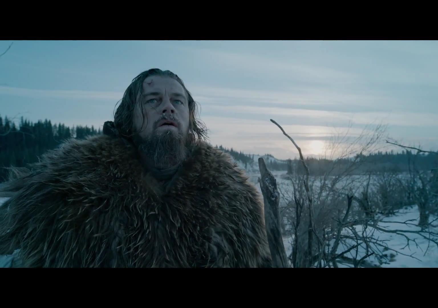 """Leonardo DiCaprio in """"The Revenant"""" Foto: Wikimedia Commons"""