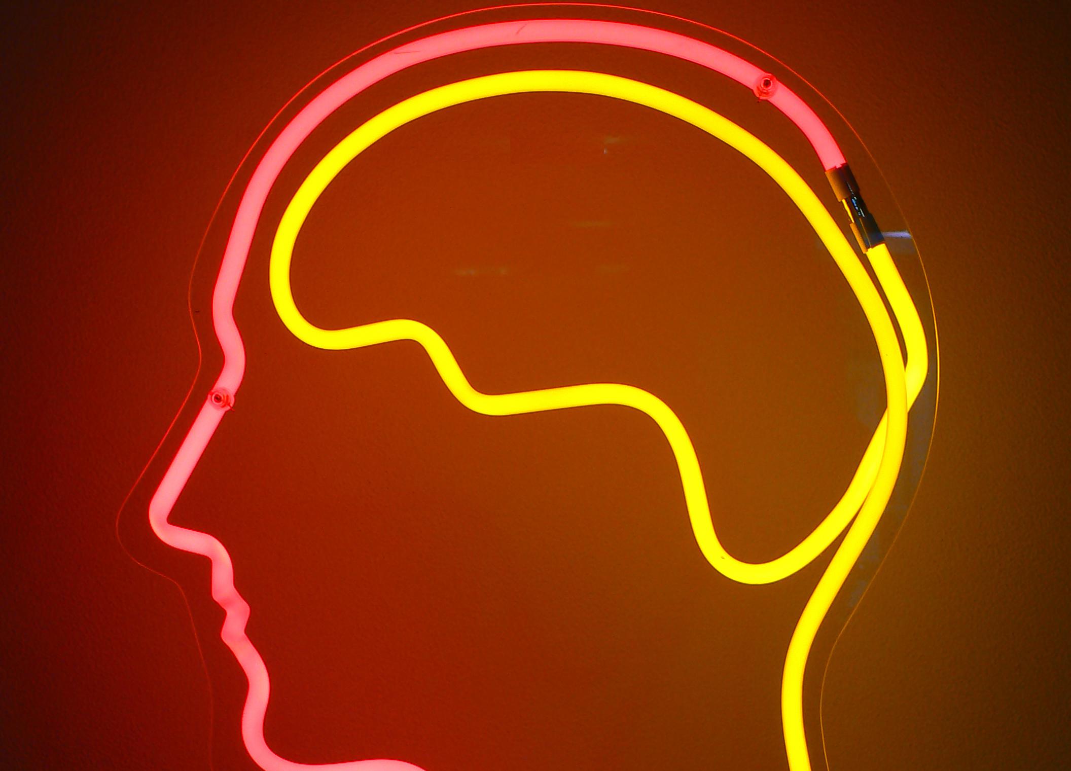 Das elektronische Gehirn