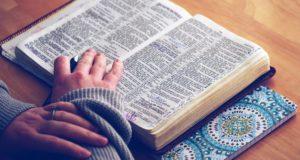 Andächtig studieren