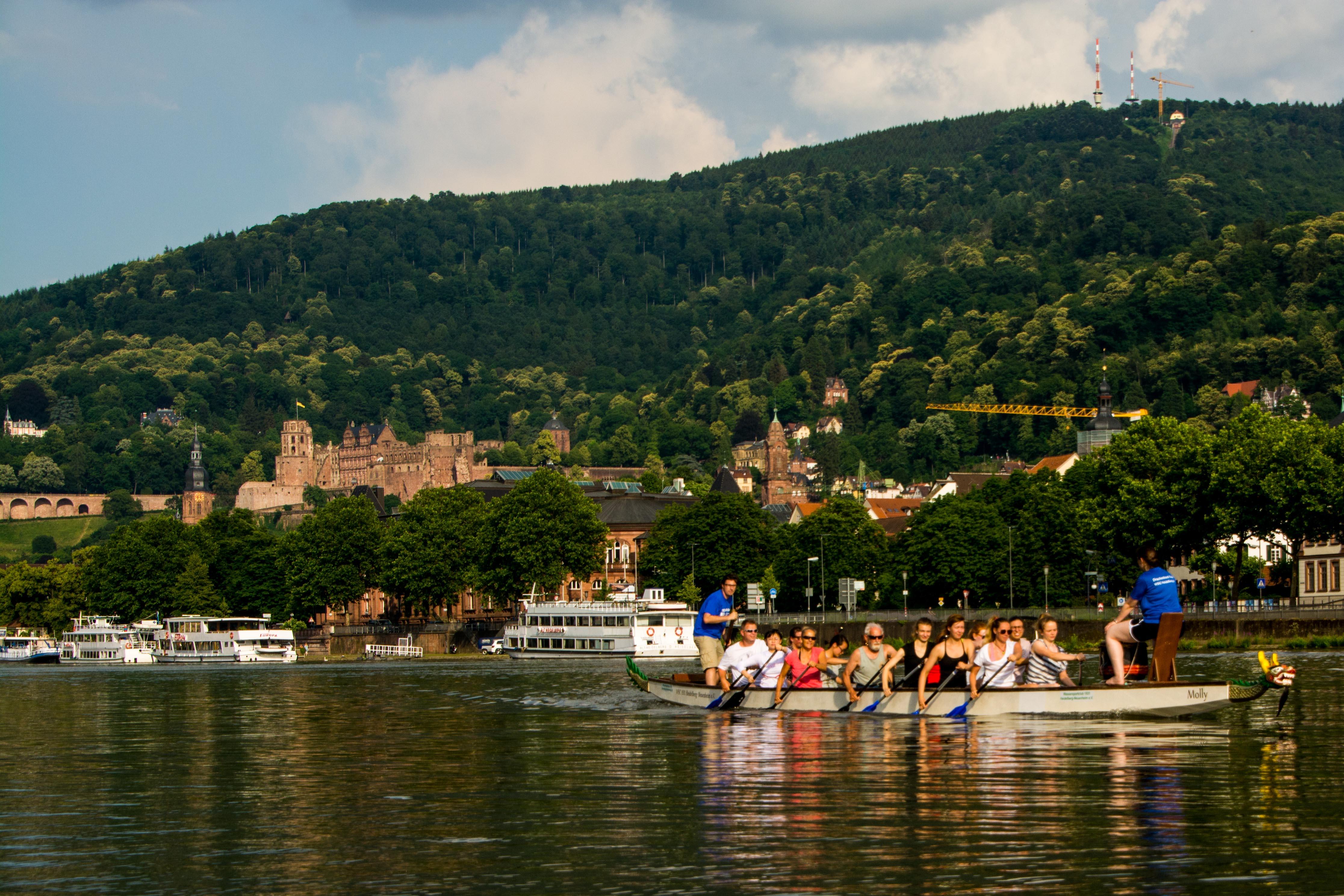 Ein Drache im Neckar