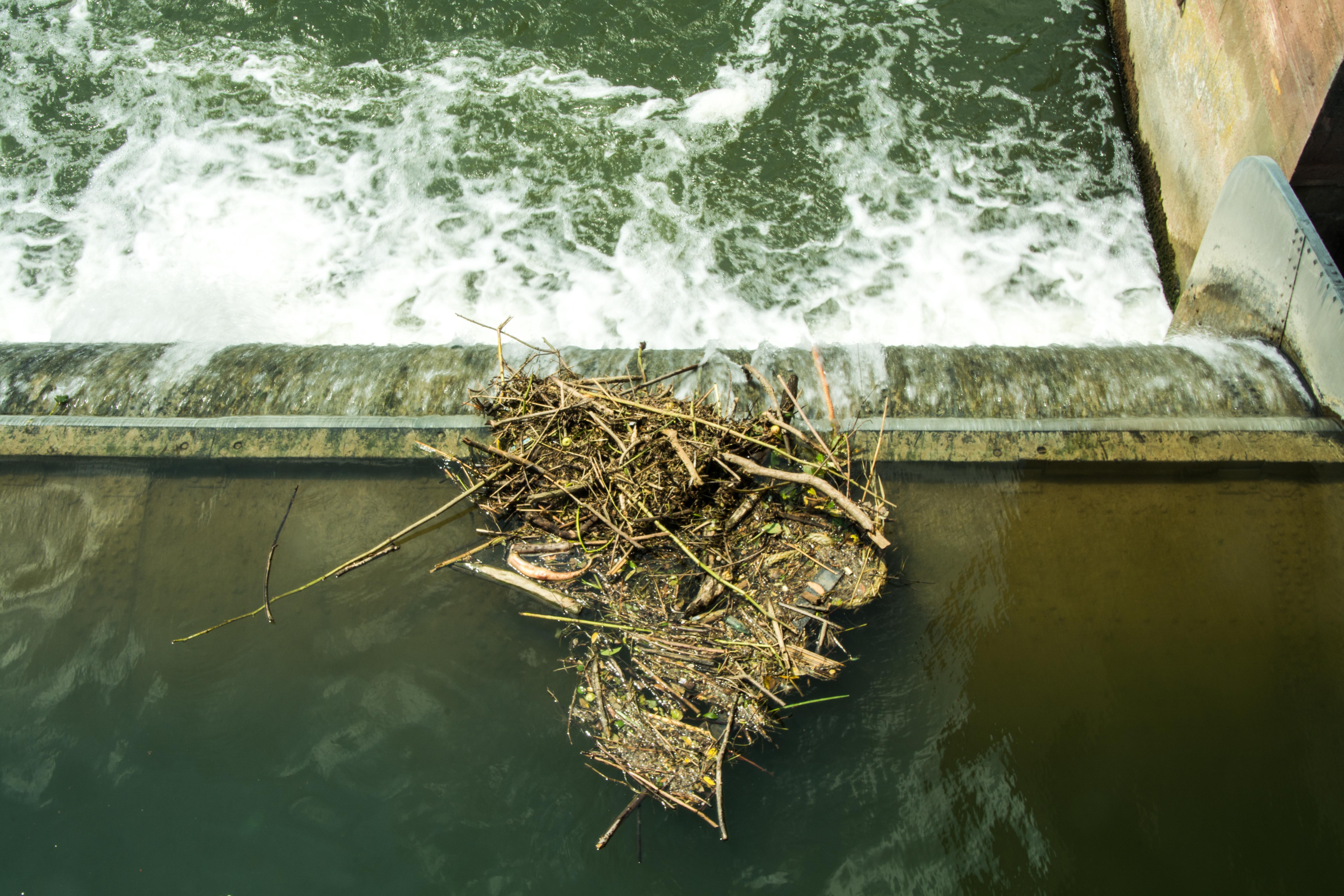 Der Neckar fließt friedlich durch die schönste Stadt des Landes? Der Schein trügt. Foto: Philip Hiller