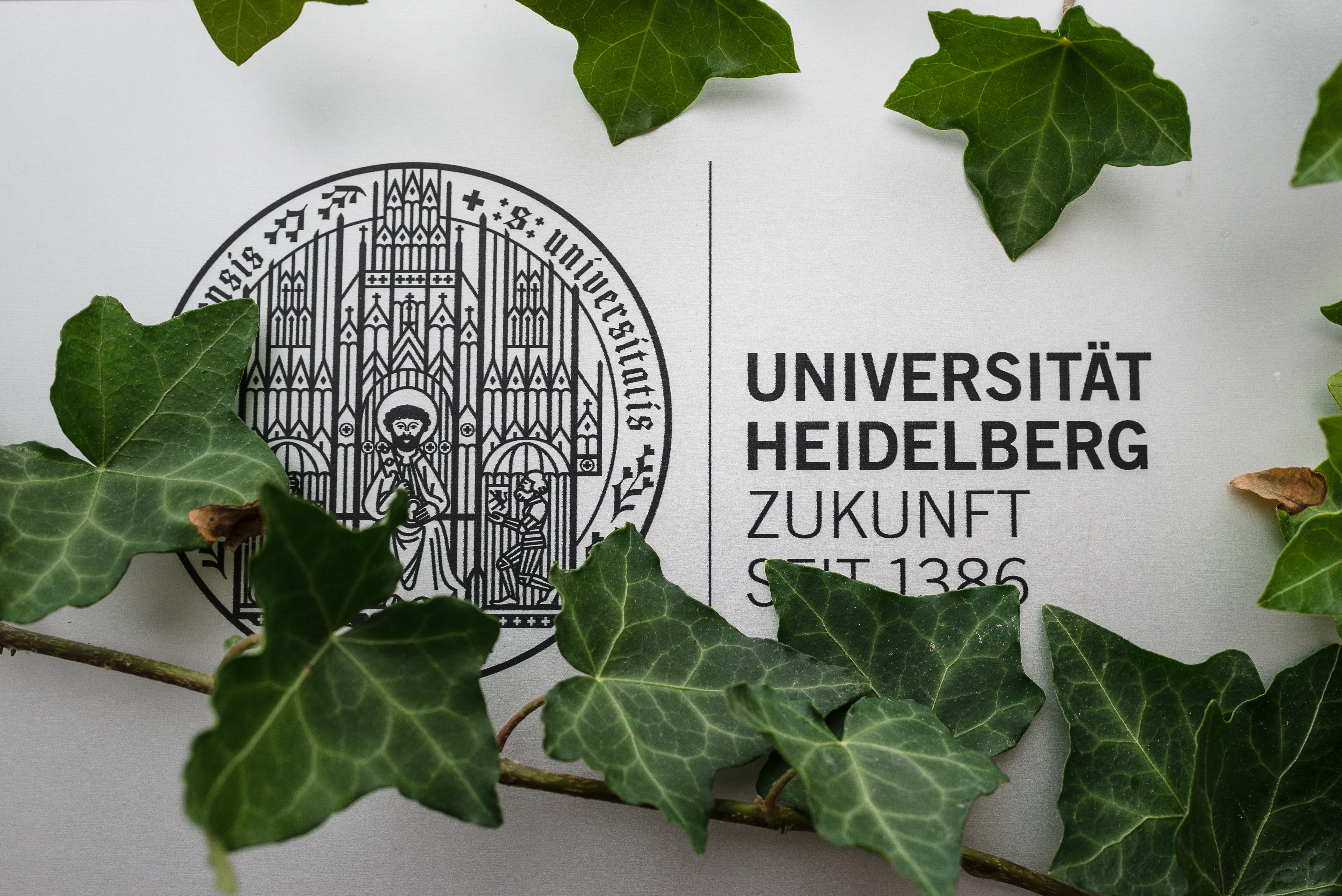 """Ob Heidelberg auch in Zukunft zur deutschen """"Ivy League"""" gehört, entscheidet sich am 19. Juli. Foto: nni"""