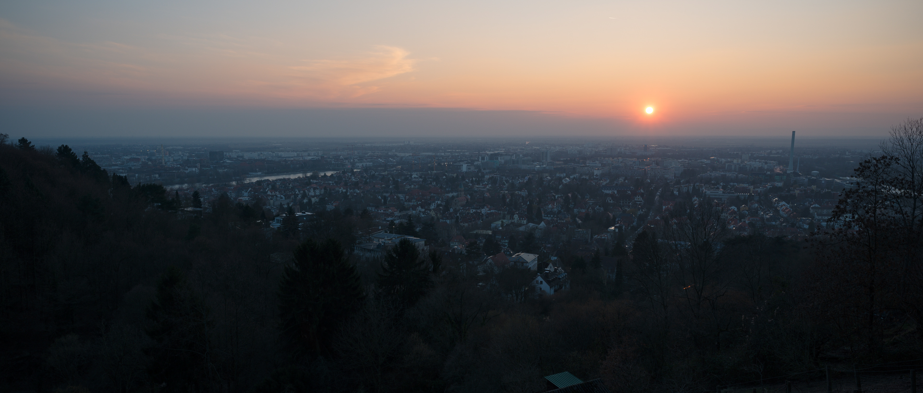 Irgendwo am Horizont: Das Café Botanik im Neuenheimer Feld. Foto: Nicolaus Niebylski