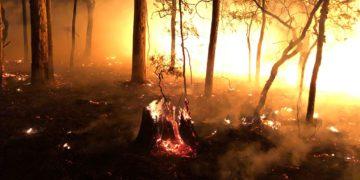 Eine Szene aus den australischen Buschfeuern. Foto: Darryn Jose (Culburra RFS)